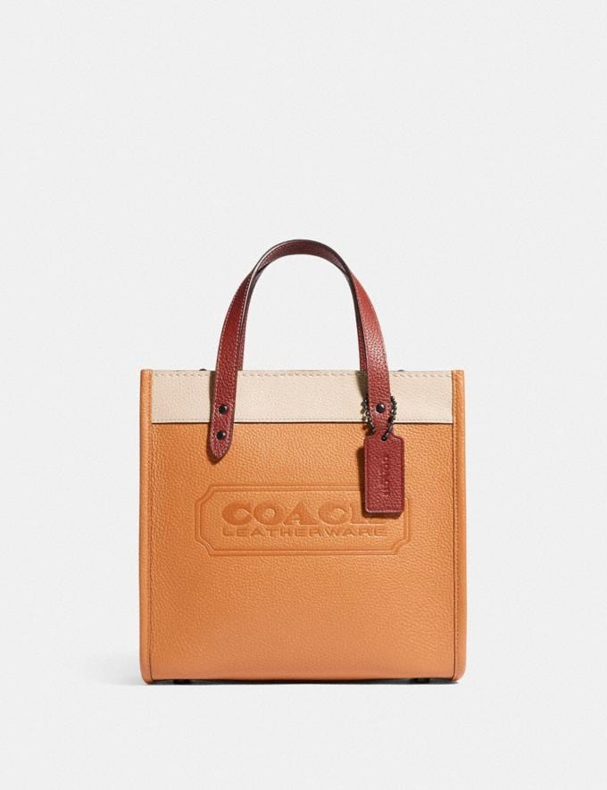 Coach Field Tote 22 in Colorblock With Coach Badge and Whipstitch V5/Natural Multi New Women's New Arrivals Bags