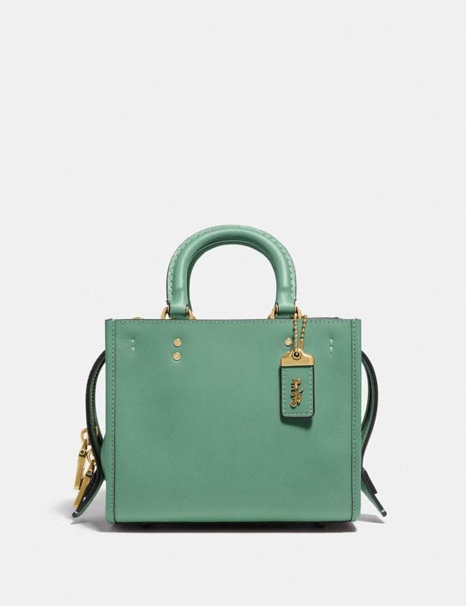 Coach Rogue 17 in Original Natural Leather B4/Plant Green PRIVATE SALE For Her Bags