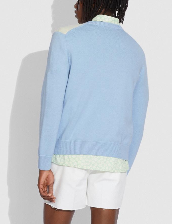 Coach Horse Argyle Sweater Pale Blue Translations 5.1 Retail Alternate View 2