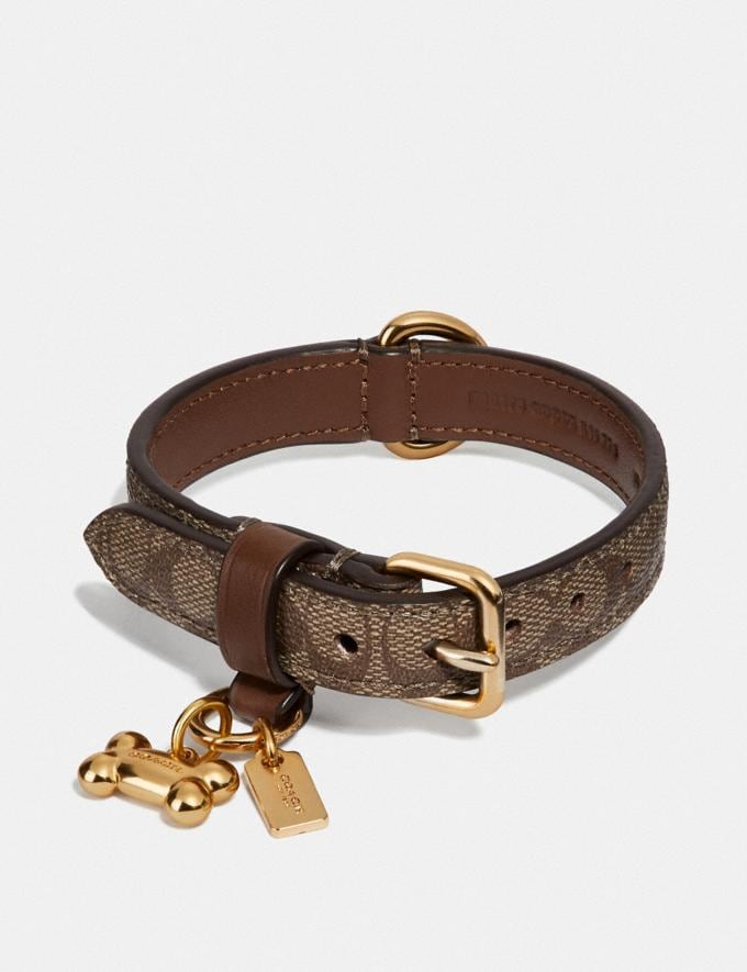 Coach Small Pet Collar in Signature Crossgrain Leather Gold/Khaki Saddle Women Accessories Pet Accessories