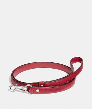 SMALL PET LEASH