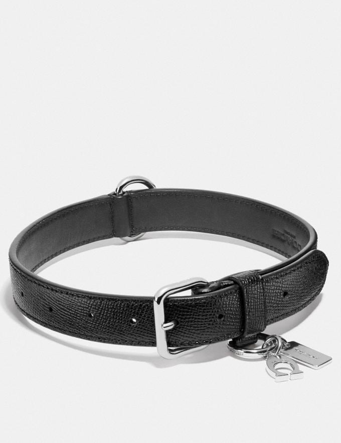 Coach Large Pet Collar Silver/Black