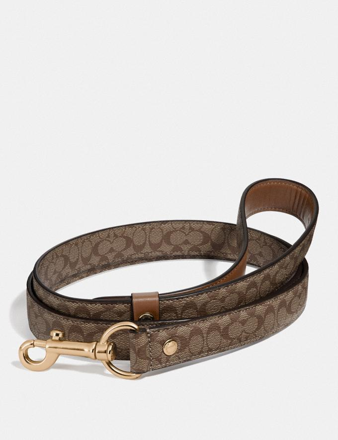Coach Large Pet Leash in Signature Crossgrain Leather Gold/Khaki Saddle