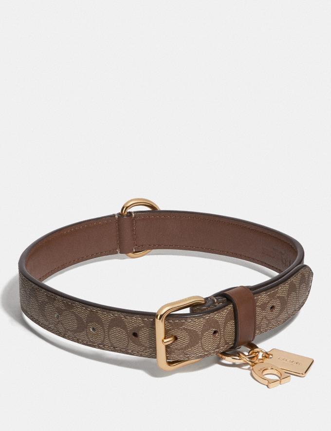 Coach Large Pet Collar in Signature Crossgrain Leather Gold/Khaki Saddle Accessories Pet Accessories