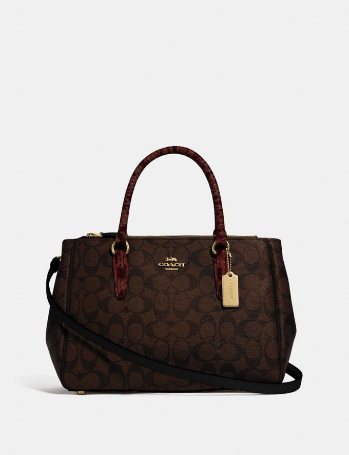 Coach Surrey Carryall in Signature Canvas Brown Black/Multi/Imitation Gold Bags Carryalls