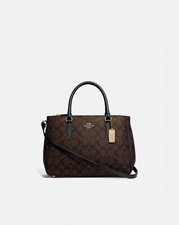 Coach SURREY CARRYALL IN SIGNATURE CANVAS