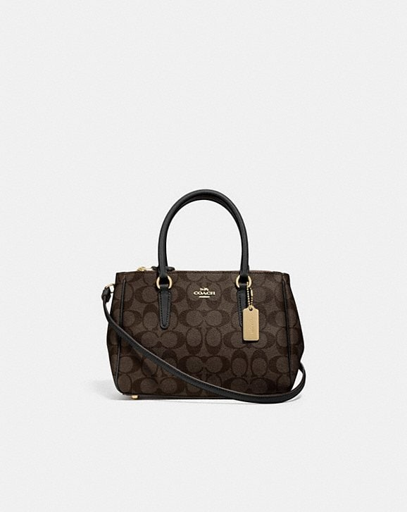 Coach MINI SURREY CARRYALL IN SIGNATURE CANVAS