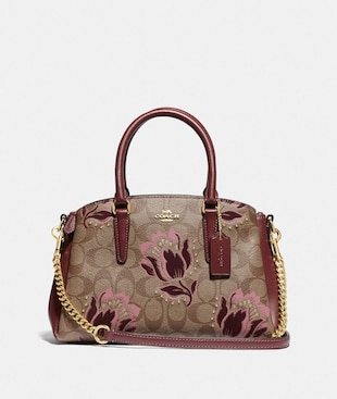 MINI SAGE CARRYALL IN SIGNATURE COATED CANVAS WITH DESERT TULIP PRINT FLOCKING