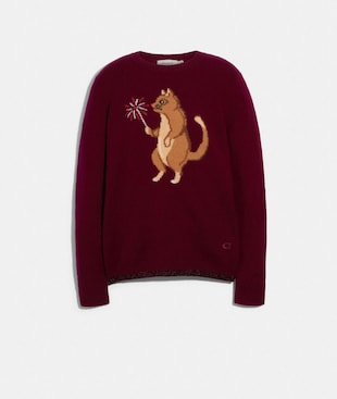 PARTY CAT INTARSIA SWEATER