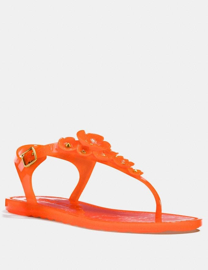 Coach Tea Rose Jelly Sandal Mandarin