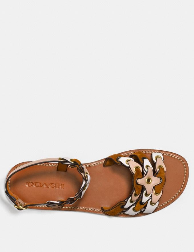 Coach Sandal With Coach Link Beechwood/Saddle/Chalk Women Shoes Flats Alternate View 2