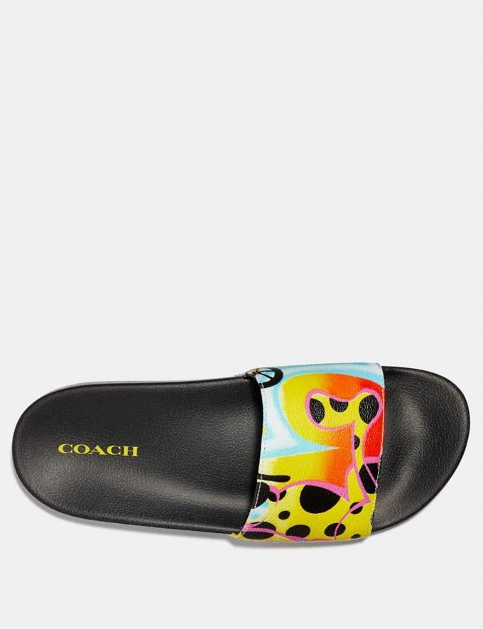 Coach Abstract Coach Wagon for Giz Slide Black/Multi New Featured Signature Remix Alternate View 2