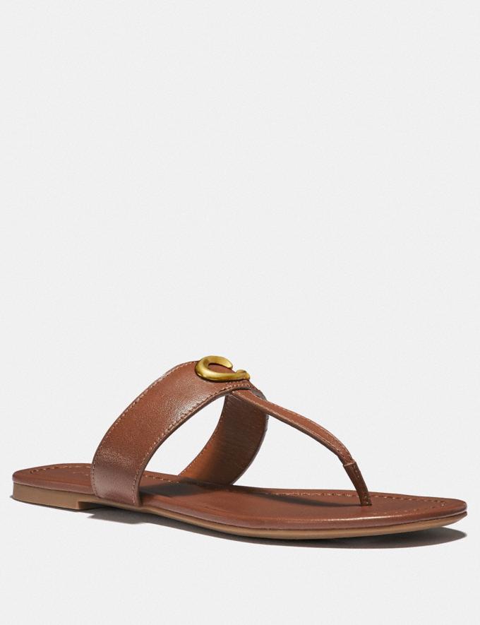 Coach Jessie Sandal Black SALE Women's Sale Shoes