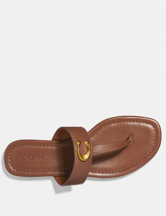 Coach Jessie Sandal Black SALE Women's Sale Shoes Alternate View 2