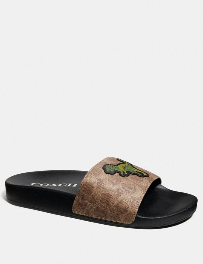 Coach Slide With Rexy Khaki Men Shoes Smart Casual