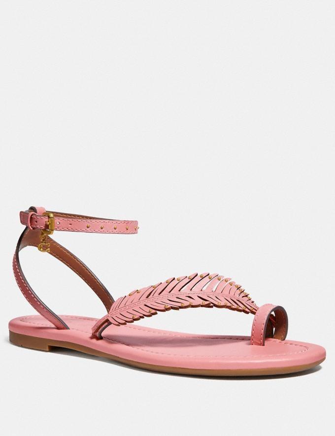 Coach Beach Flat Sandal Lt Blush Women Shoes Flats