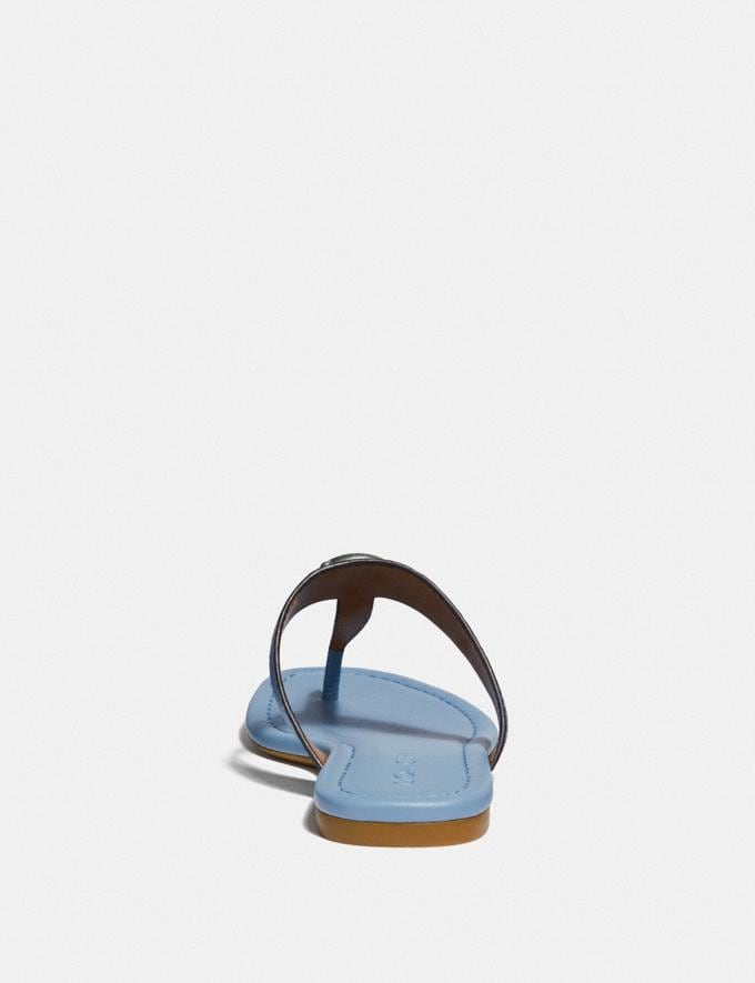 Coach Jessie Sandal Slate  Alternate View 3