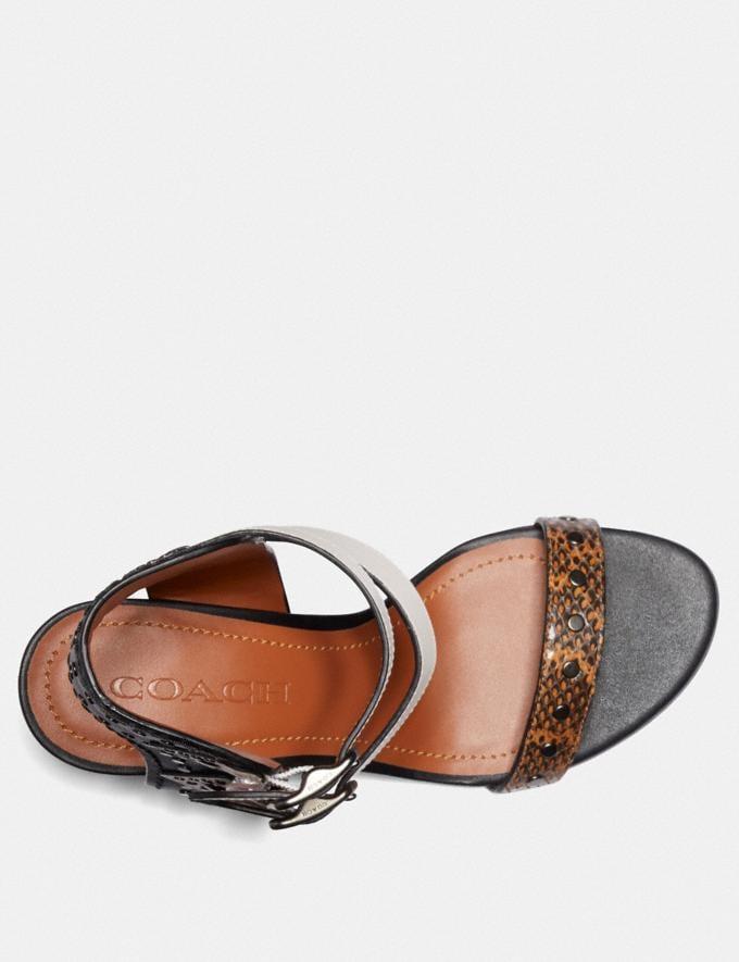 Coach Odessa Wedge With Snakeskin Detail Burnt Sienna/Black/Chalk SALE Women's Sale Shoes Alternate View 2