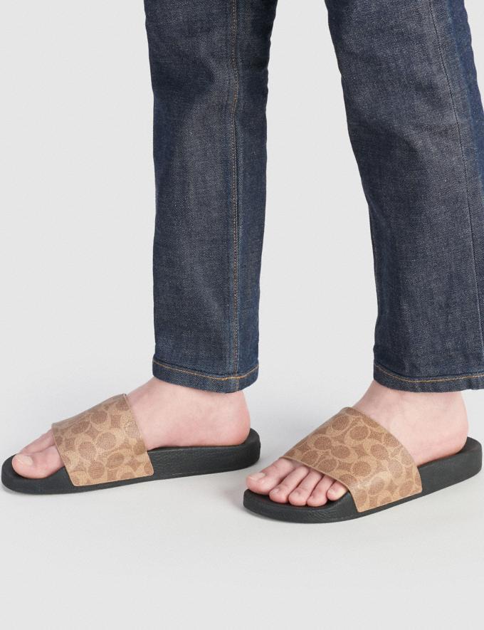 Coach Slide Tan Signature Men Shoes Casual Alternate View 3