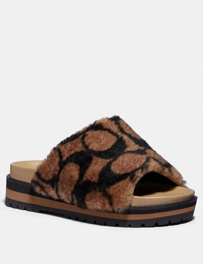 Coach Kloe Slide Saddle/Black Women Shoes Sandals