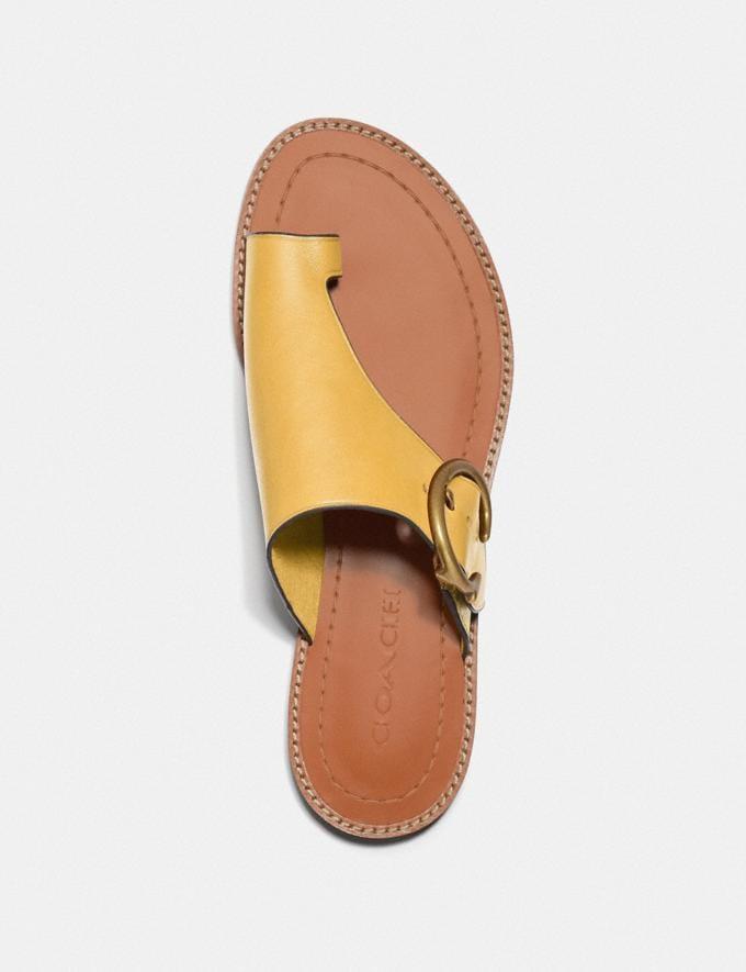Coach Luca Sandale Sonnenlicht Damen Schuhe Sandalen Alternative Ansicht 2
