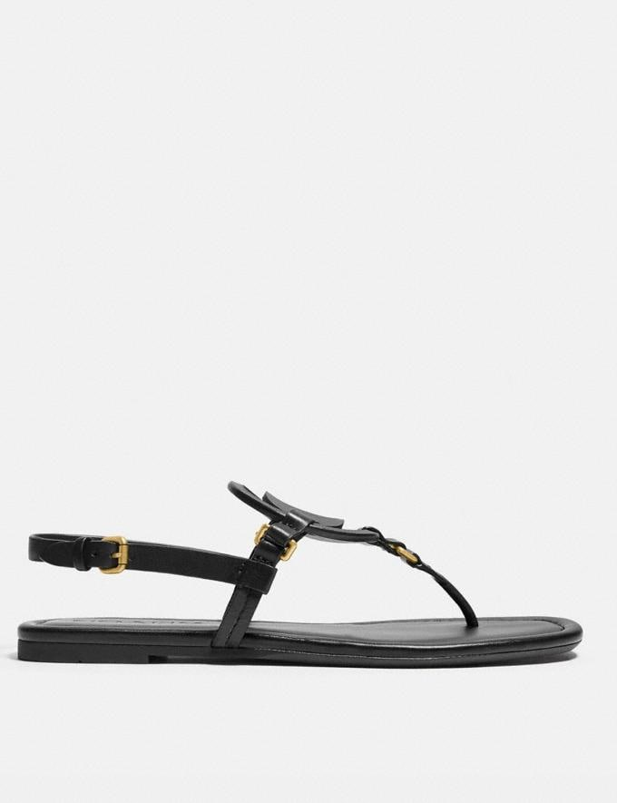 Coach Jeri Sandal Black New Women's New Arrivals Alternate View 1