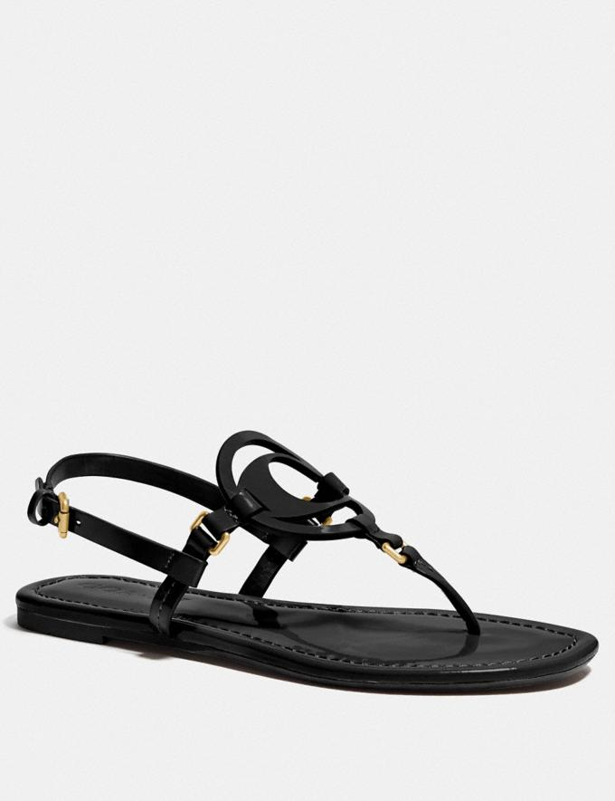 Coach Jeri Sandal Black New Women's New Arrivals Shoes