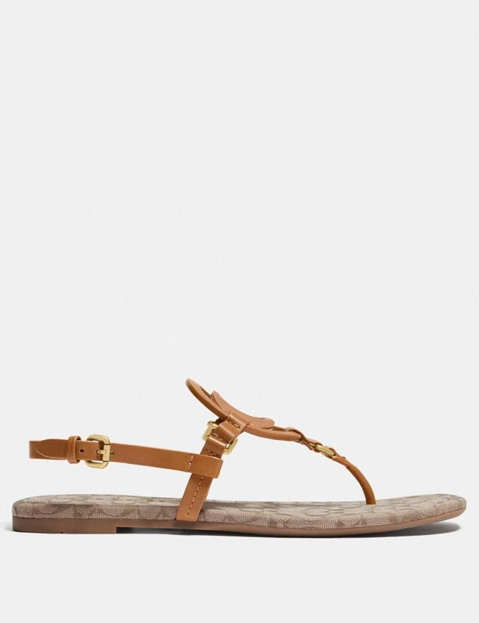 Coach Jeri Sandal Light Saddle/Stone Women Shoes Flats