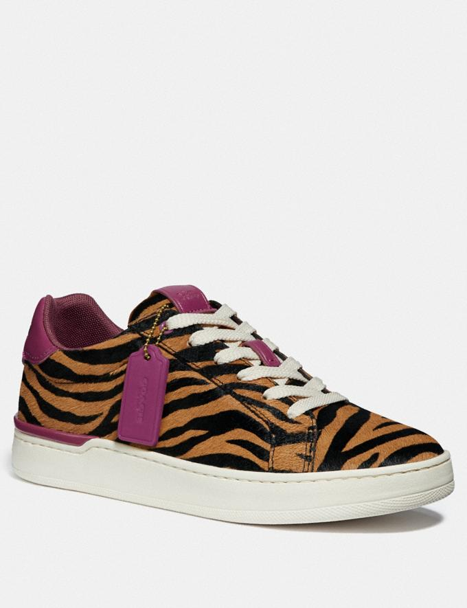 Coach Lowline Low Top Sneaker Black Camel/Hibiscus