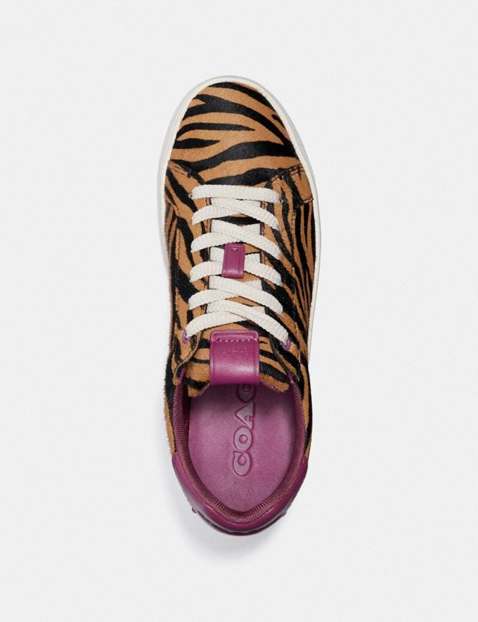 Coach Lowline Low Top Sneaker Black Camel/Hibiscus  Alternative Ansicht 2