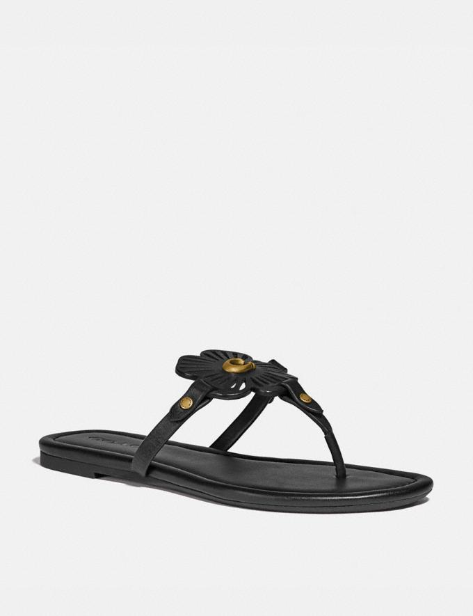Coach Julia Sandal Black New Women's New Arrivals Shoes