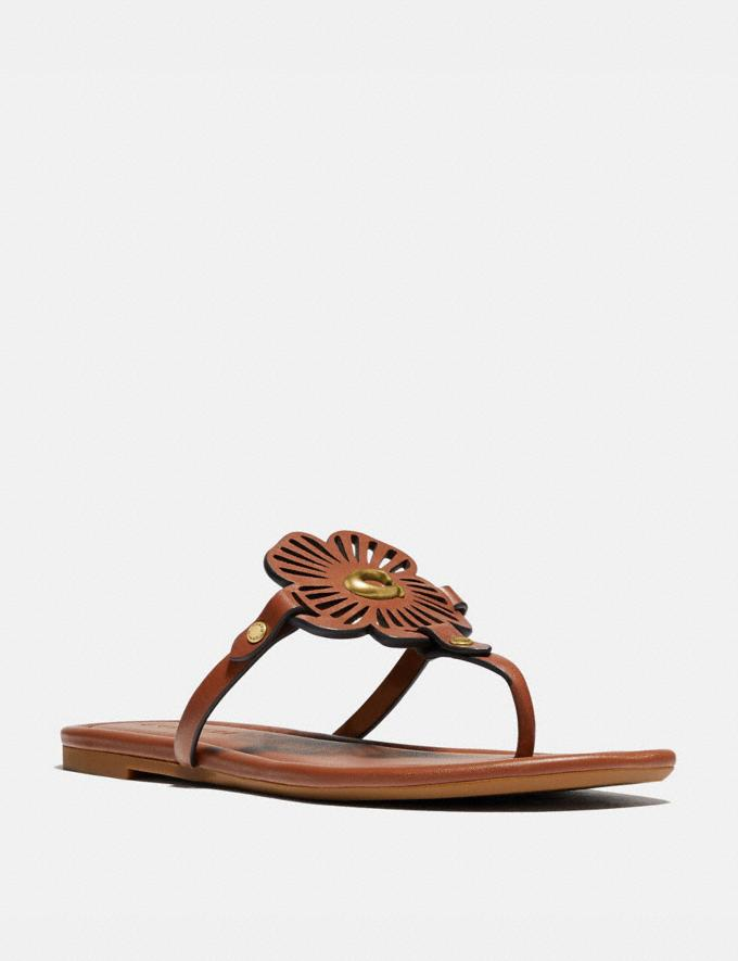 Coach Julia Sandal 1941 Saddle Women Shoes Sandals