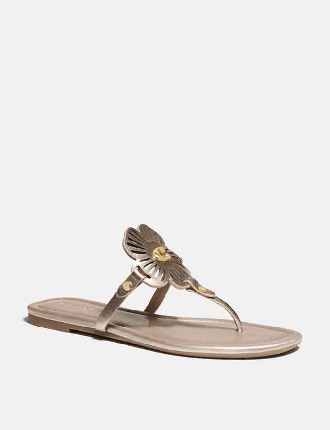 Coach Julia Sandal Champagne Women Shoes Sandals