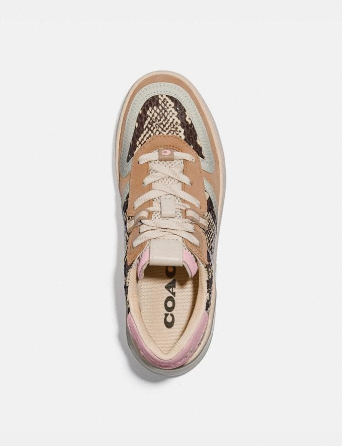 Coach Citysole Court Sneaker in Snakeskin Beechwood/Aurora  Alternate View 2