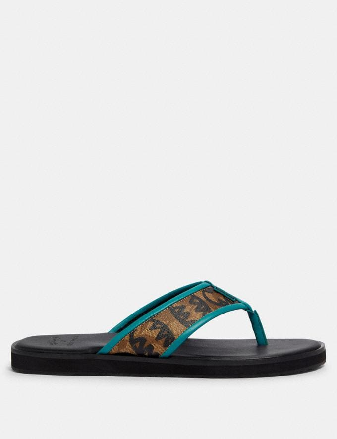 Coach Flip Flop With Rexy by Guang Yu Khaki  Alternate View 1