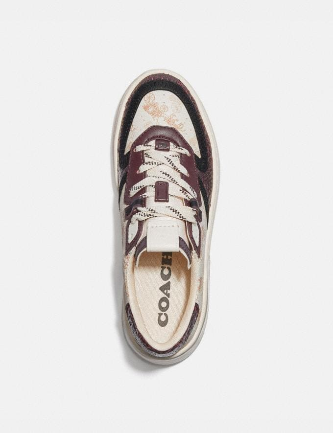 Coach Citysole Court Sneaker With Horse and Carriage Print and Snakeskin Detail Ivory/Wine Women Shoes Trainers Alternate View 2