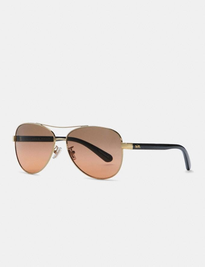Coach Horse and Carriage Pilot Sunglasses Light Gold Black