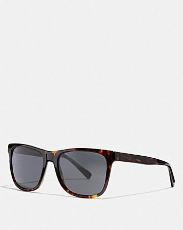 leroy sunglasses
