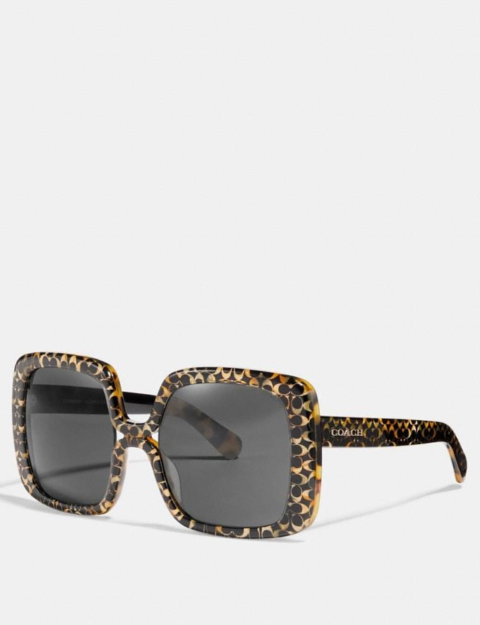 Coach Ombre Signature Square Sunglasses Spotty Tortoise