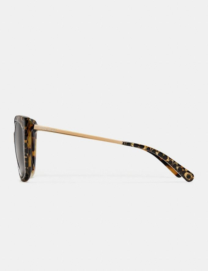 Coach Ombre Signature Square Sunglasses Spotty Tortoise  Alternate View 3