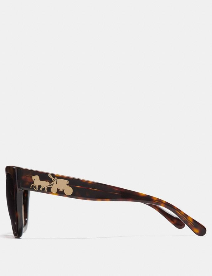 Coach Horse and Carriage Hologram Square Sunglasses Dark Tortoise Women Accessories Sunglasses Alternate View 3