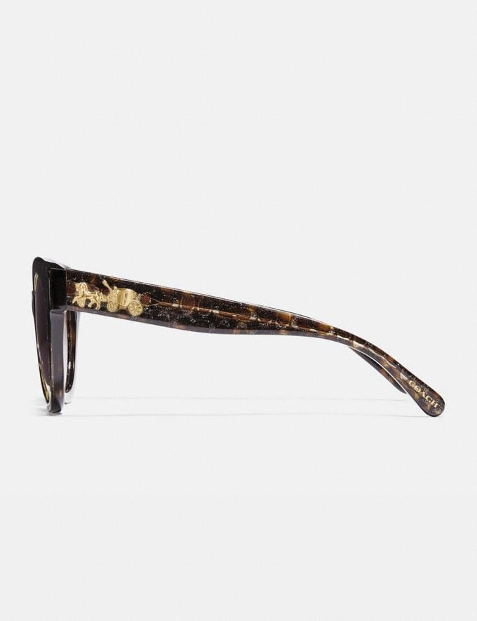 Coach Signature Round Sunglasses Tortoise Glitter Sig C Women Edits Summer Picks Alternate View 3