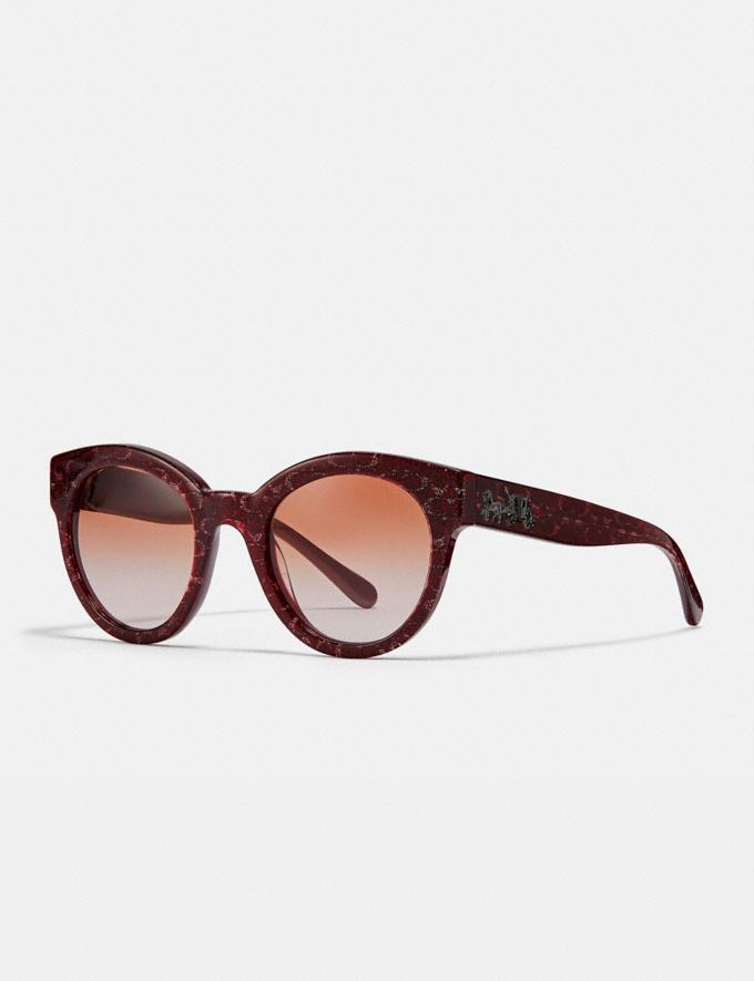 Coach Signature Round Sunglasses Burgundy Glitter Sig C Women Accessories Sunglasses