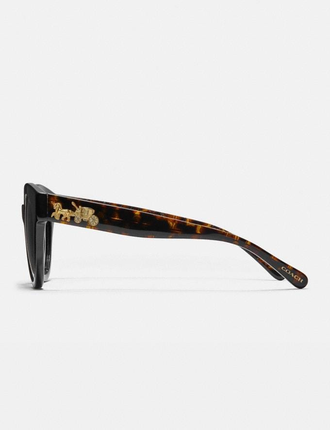 Coach Signature Round Sunglasses Black/Tort Glitter Sig C Women Edits Summer Picks Alternate View 3