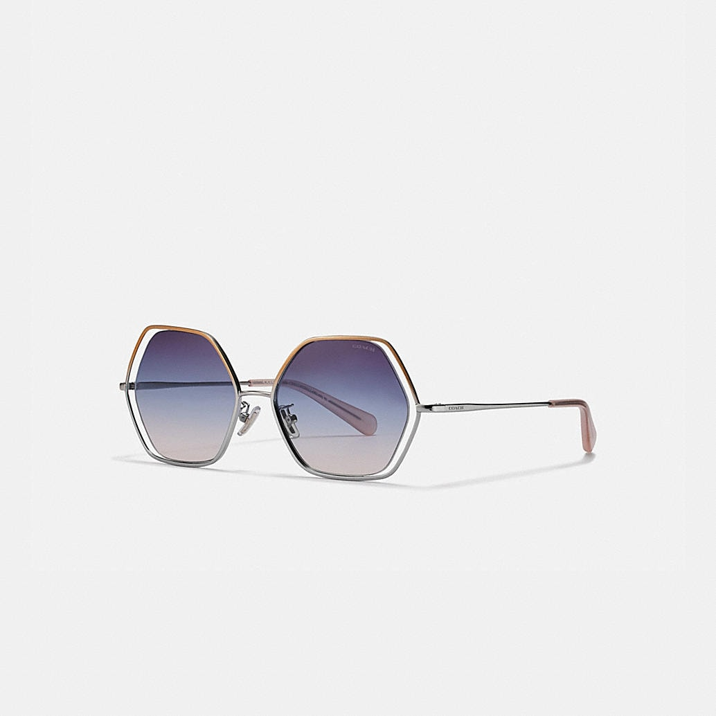 Wire Frame Hexagon Sunglasses by Coach