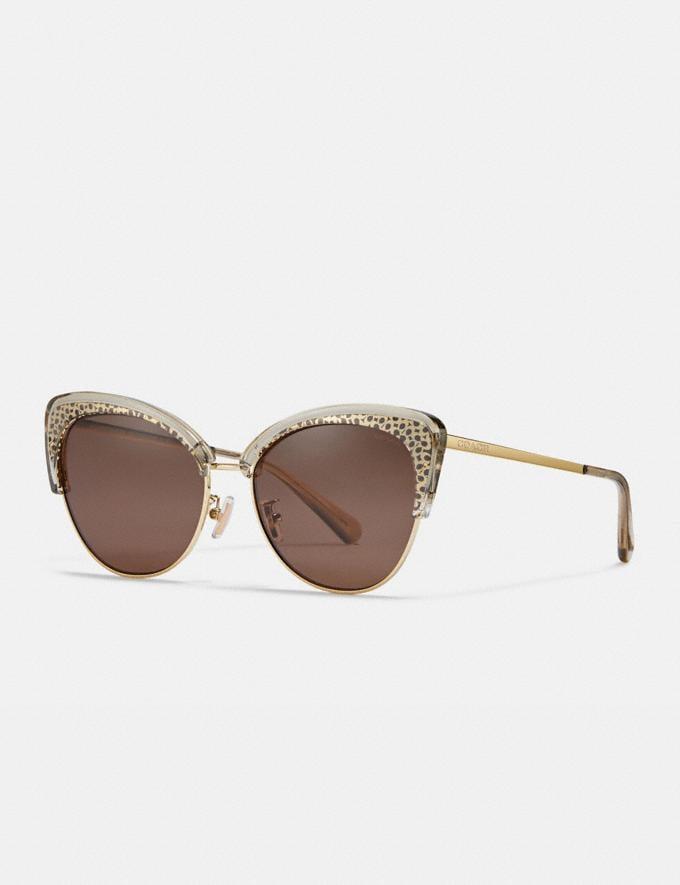 Coach Signature Cat Eye Sunglasses Smoke Women Accessories Sunglasses