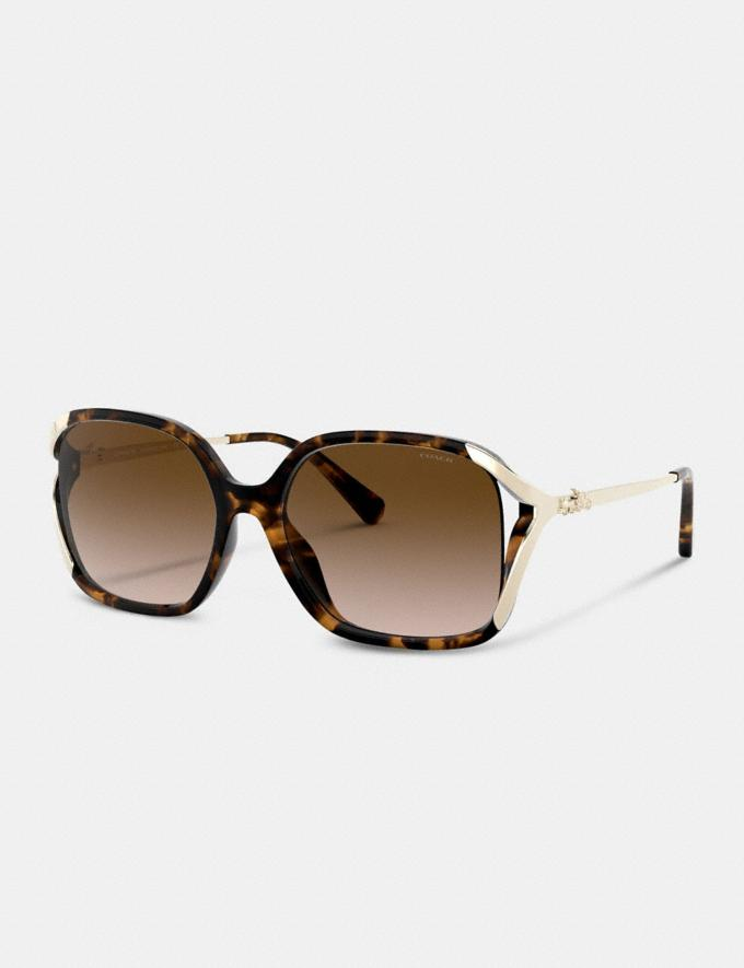 Coach Oversized Horse and Carriage Sunglasses Dark Tortoise Women Accessories Sunglasses