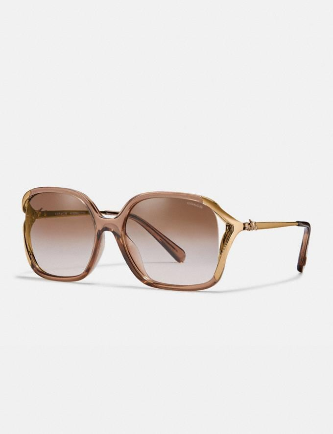Coach Oversized Horse and Carriage Sunglasses Brown New Women's New Arrivals Collection