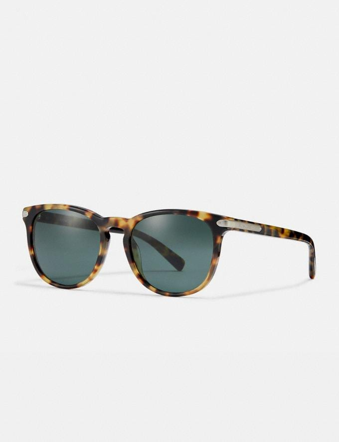 Coach Round Frame Sunglasses Tokyo Tortoise/Green Gifts For Him Under $300