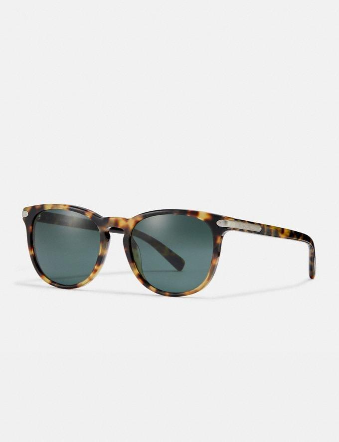 Coach Round Frame Sunglasses Tokyo Tortoise/Green Men Accessories Sunglasses